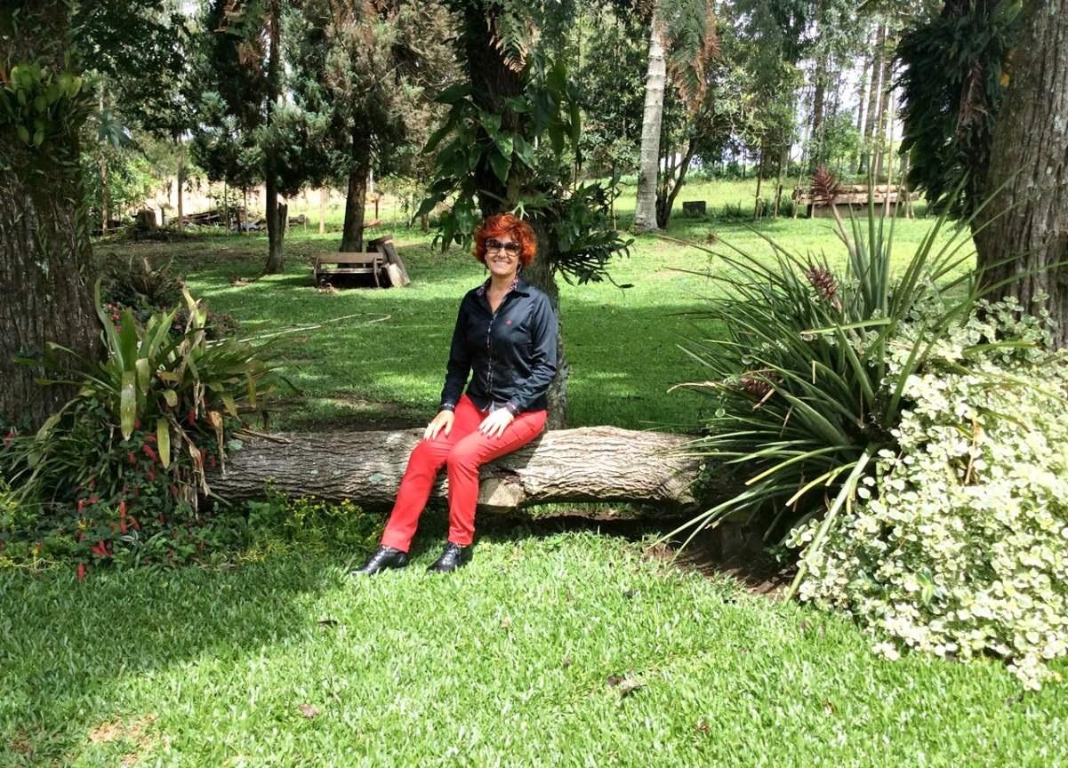 Witmarsum a Alemanha no Paraná Sylvia Yano