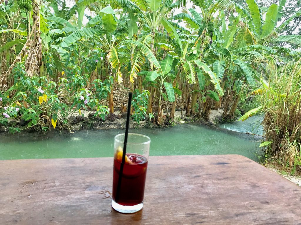 Tao Paradise-gastronomia gourmet italiana - drink de boas vindas