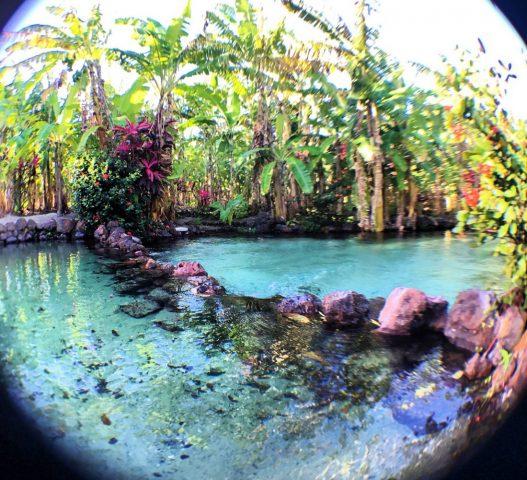 Tao Paradise, a Indonésia brasileira em Catolé