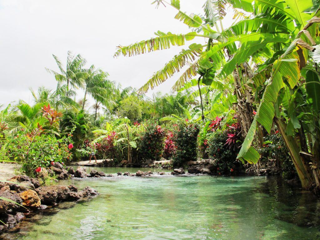 Tao Paradise RN