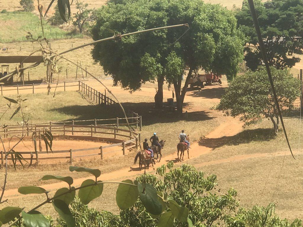 Rancho Canabrava - Cavalos