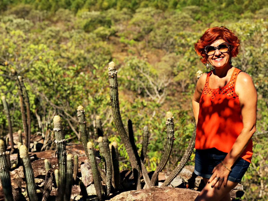 Pedra Chapéu do Sol - vegetação rupestre