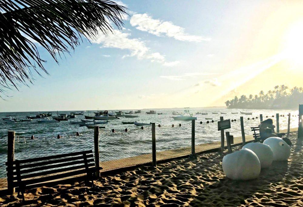 Praia do Forte - Projeto Tamar