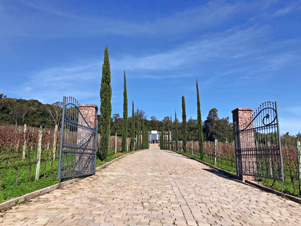 Vinícola Almaúnica - entrada