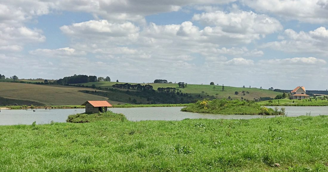 Passeio Perto de Curitiba na Ponyland
