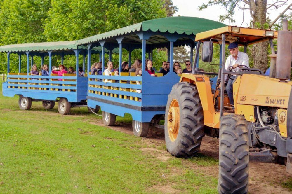 Ponyland- passeio de trem