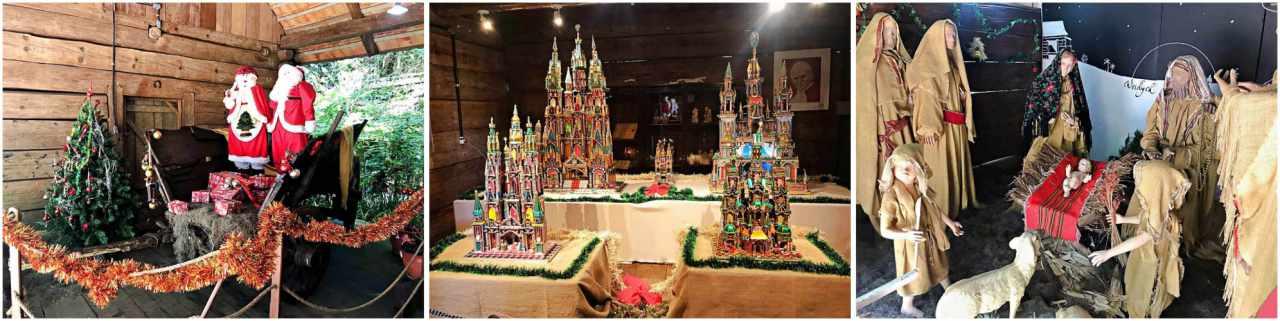 Como conhecer Curitiba em 42 atrações - Bosque do Papa
