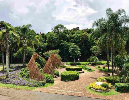 Como conhecer Curitiba em 42 atrações