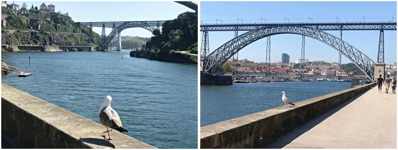 Onde ficar em Porto Portugal hotéis 1