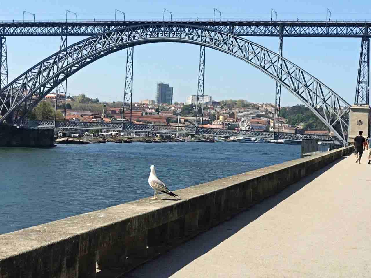 Ponte D. Luis I - O que fazer em Porto Portugal