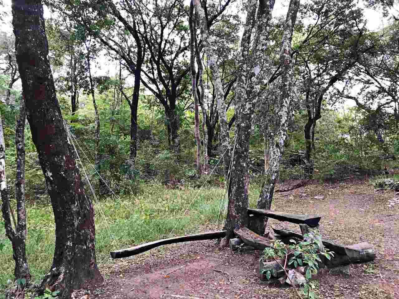 Destinos naturais no Brasil - Balanços - Zareia
