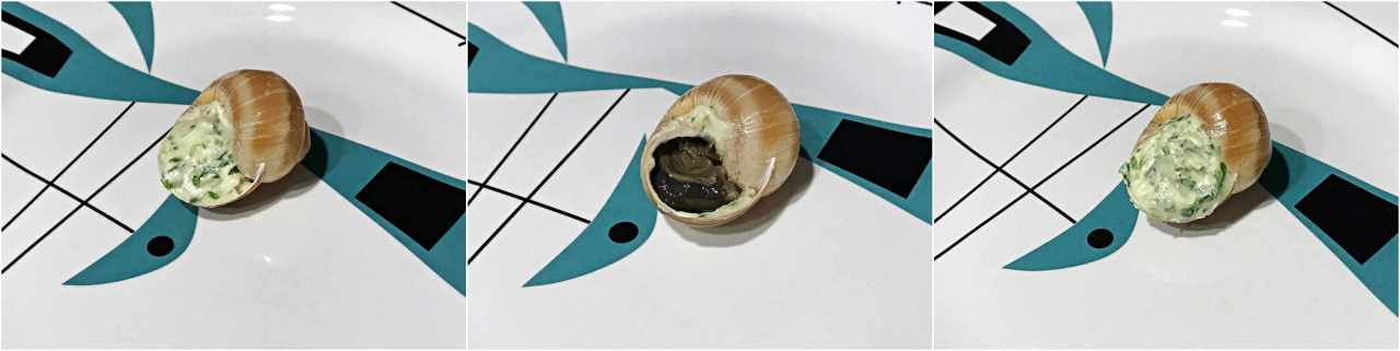 Passos preparo concha e Escargot