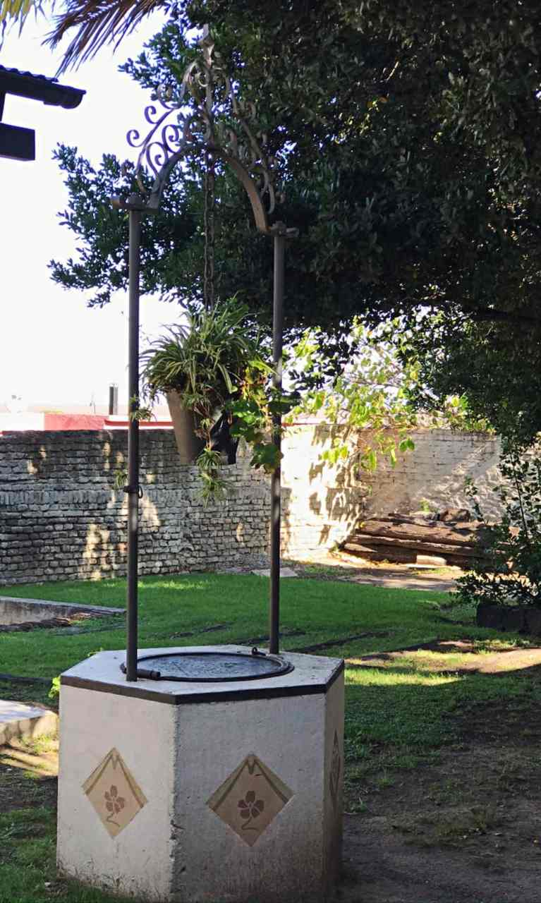 Jardim do Freddo Café