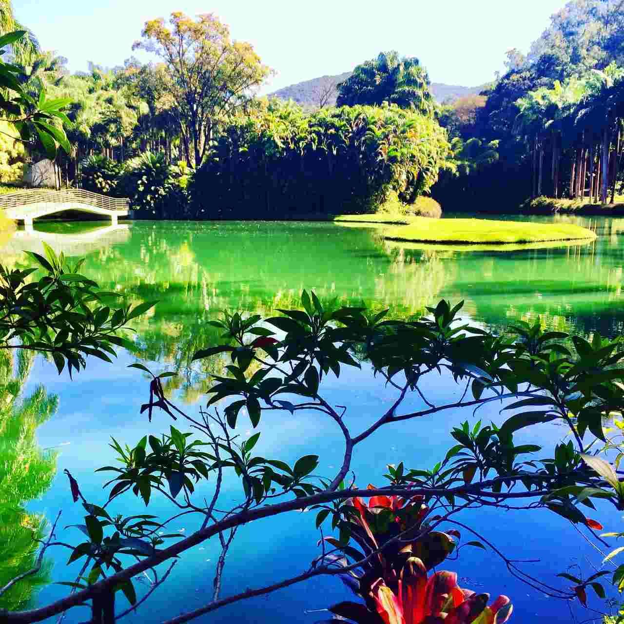 Inhotim - Destinos Naturais no Brasil