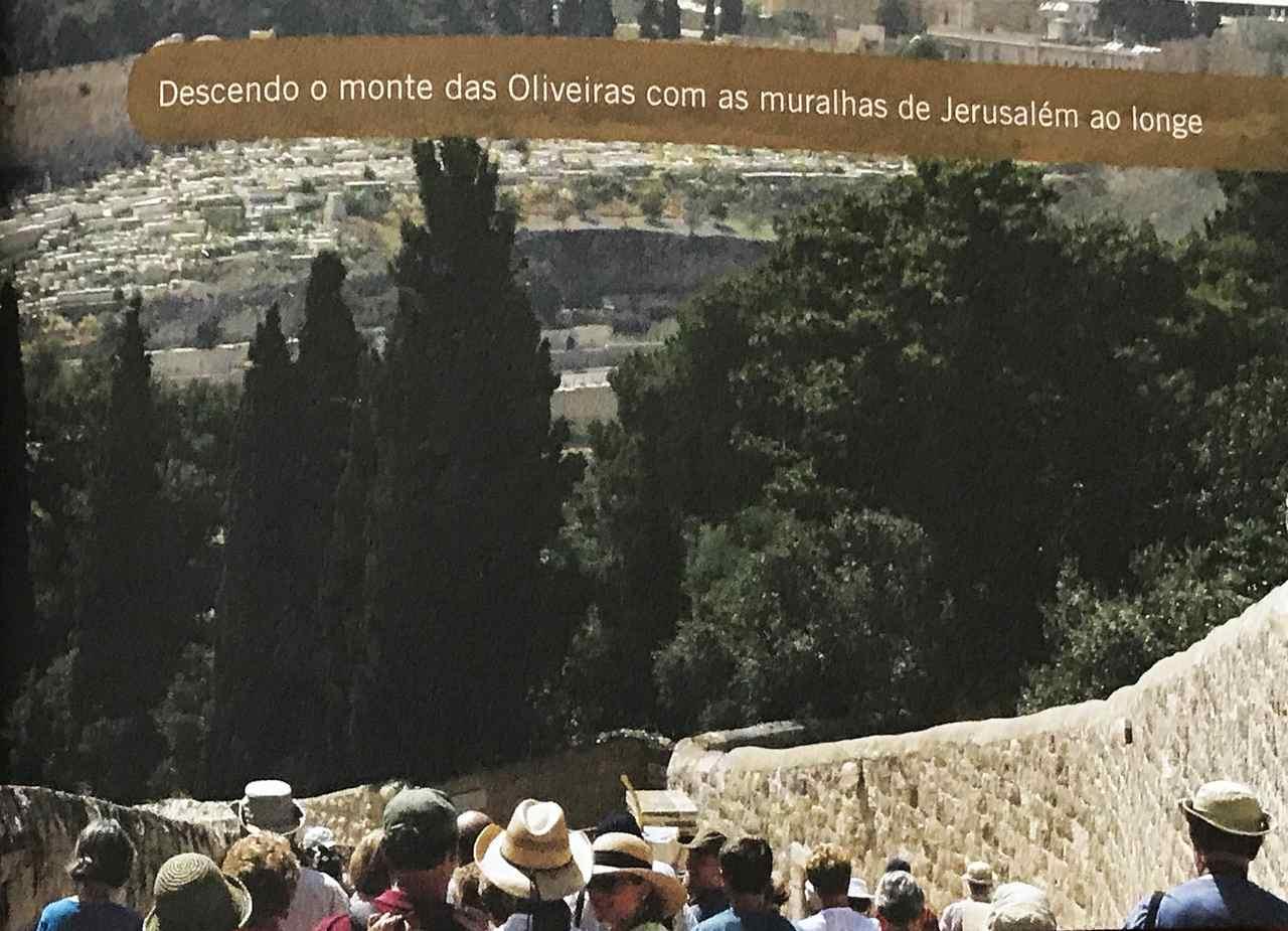 30 dias na terra dos Salmos - Monte das Oliveiras